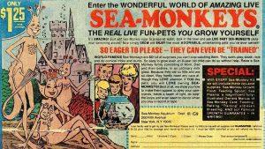 Enter the WONDERFUL WORLD OF AMAZING LIVE SEA-MONKEYS
